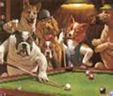 The Old Dogs Getting Together for a a friendly Pool Game