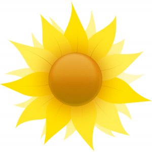 sunflower_sun_graphic105